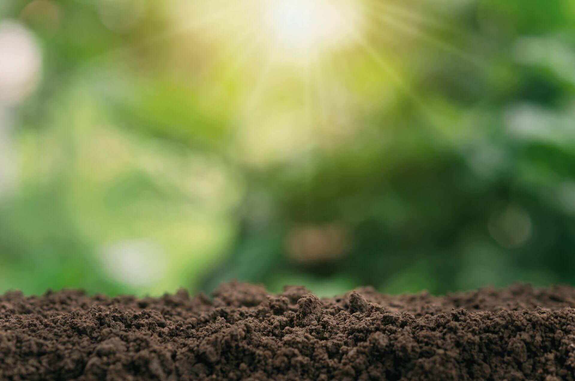 dirt supply in La Vergne Smyrna Murfreesboro TN scaled e1616165278604